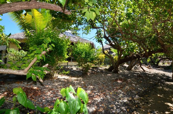 Photo 2 - Villa de résidence en front d'océan