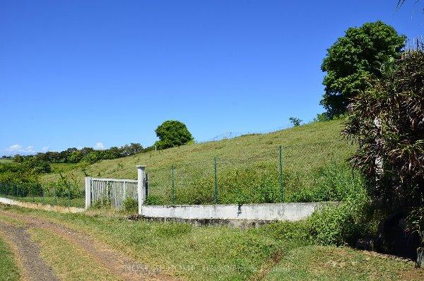Photo 6 - Terrain avec belle vue