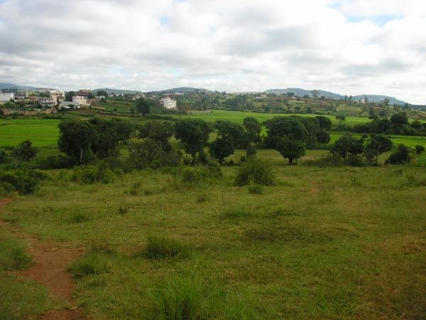 Photo 1 - Terrain de 3300m² à vendre à Ambohidratrimo