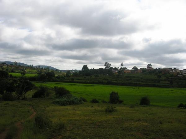 Photo 2 - Terrain de 3300m² à vendre à Ambohidratrimo