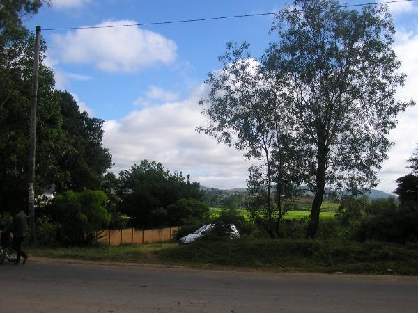 Photo 4 - Terrain de 3300m² à vendre à Ambohidratrimo