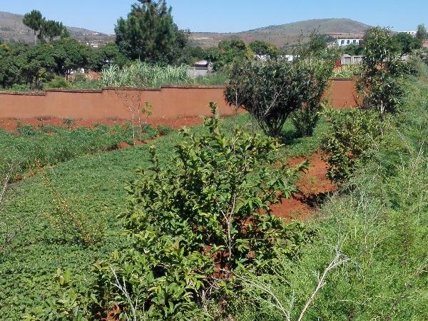 Photo 2 - terrain titré à VONTOVORONA