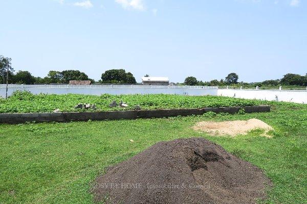 Photo 5 - Parcelle pas loin de plage à Ampasikely