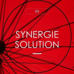 Annonceur Professionnel : Synergie Solution