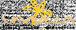Annonceur Professionnel : vanillaisland-export.com